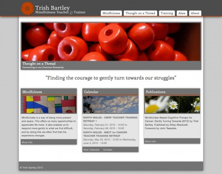 Trish Bartley's website - after